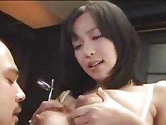 Ayami vắt sữa